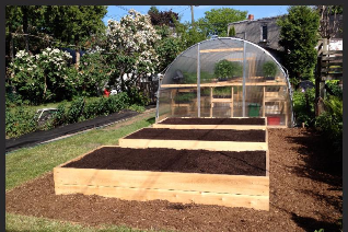 BUFCO greenhouse and edible backyard