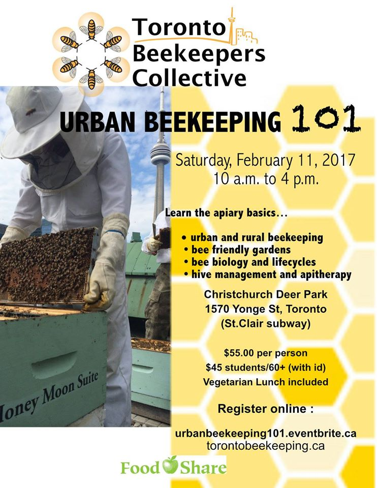 urban beekeeping workshop february 11 2017